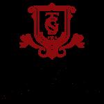 time-guzel-sanatlar-logo